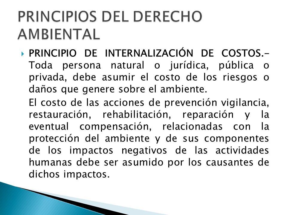 PRINCIPIO DE INTERNALIZACIÓN DE COSTOS.- Toda persona natural o jurídica, pública o privada, debe asumir el costo de los riesgos o daños que genere sobre el ambiente.