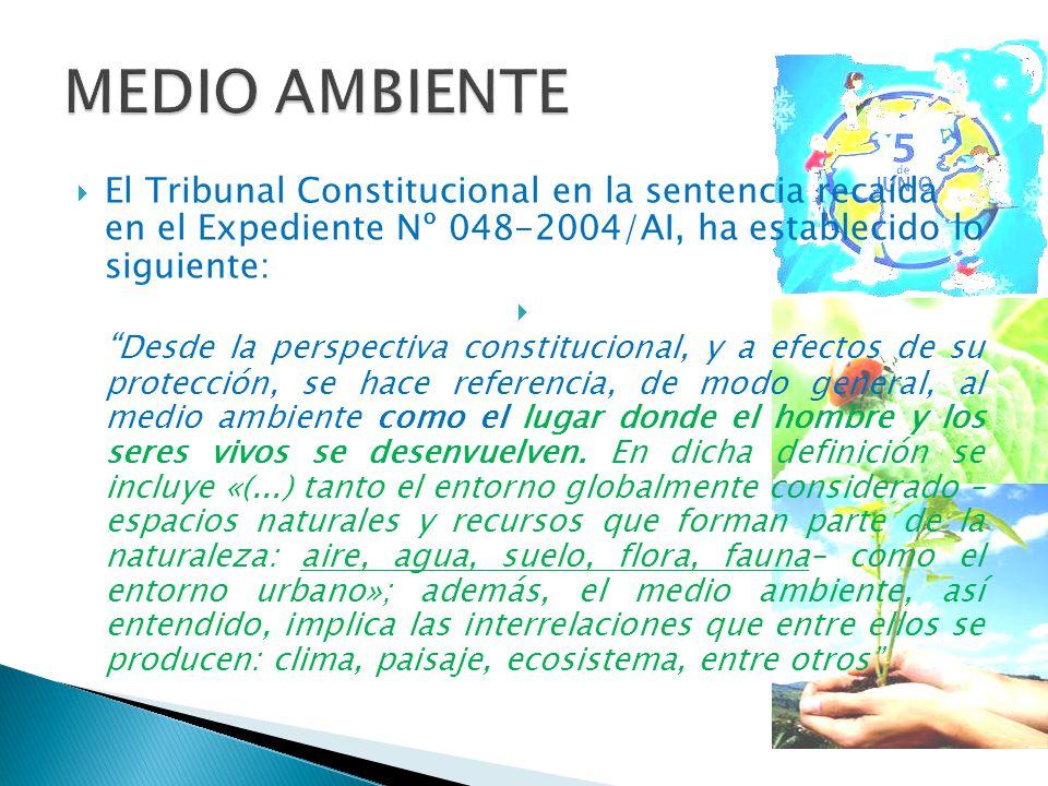 El Tribunal Constitucional en la sentencia recaída en el Expediente Nº 048-2004/AI, ha establecido lo siguiente: Desde la perspectiva constitucional,