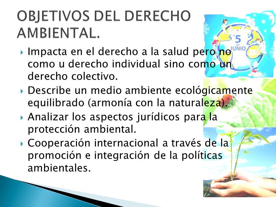 Impacta en el derecho a la salud pero no como u derecho individual sino como un derecho colectivo.