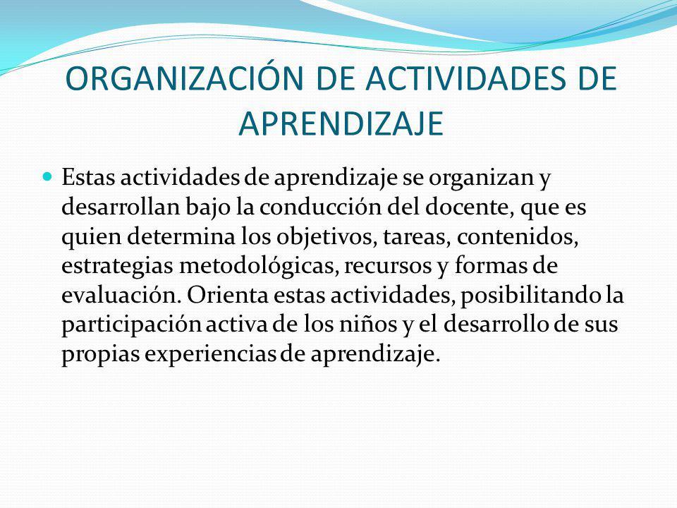 ORGANIZACIÓN DE ACTIVIDADES DE APRENDIZAJE Estas actividades de aprendizaje se organizan y desarrollan bajo la conducción del docente, que es quien de