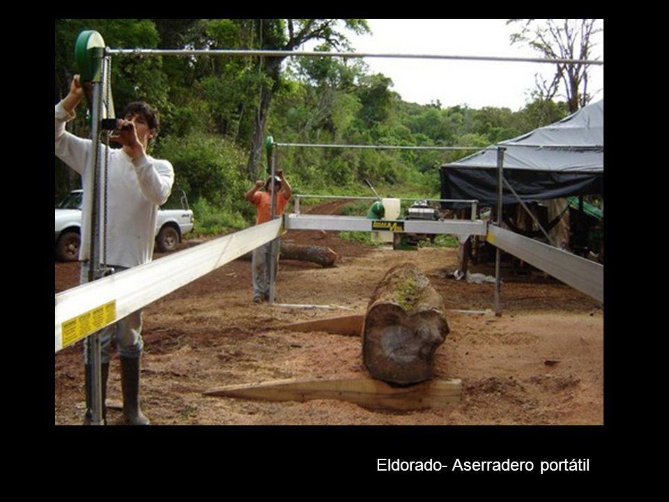 Eldorado - Aserradero