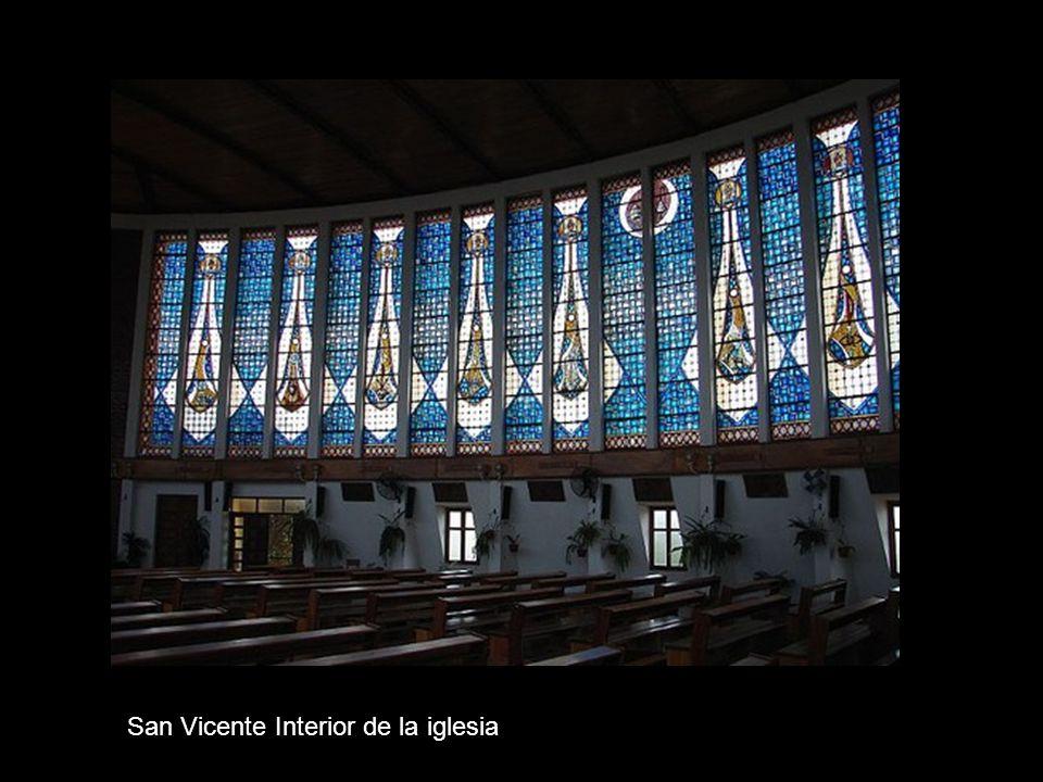 San Vicente – Lapachos en flor
