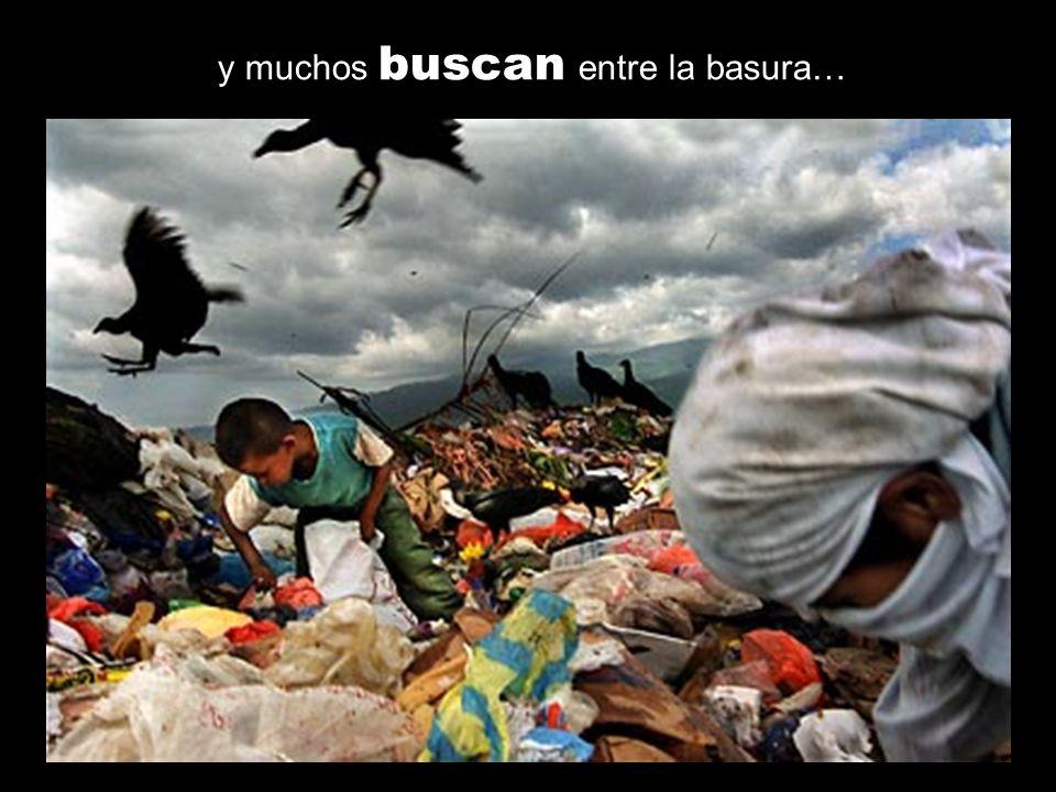 y muchos buscan entre la basura…