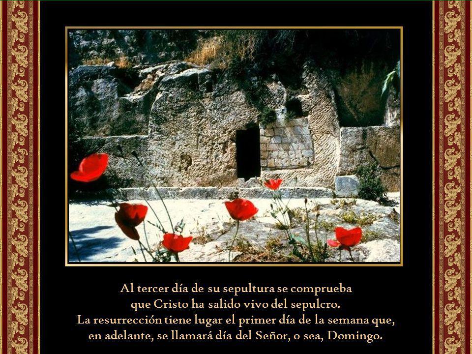 La resurrección de Jesús crea la Iglesia.