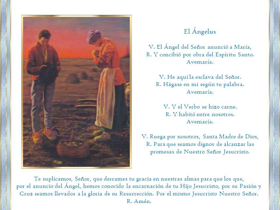 El Ángelus V.El Ángel del Señor anunció a María, R.