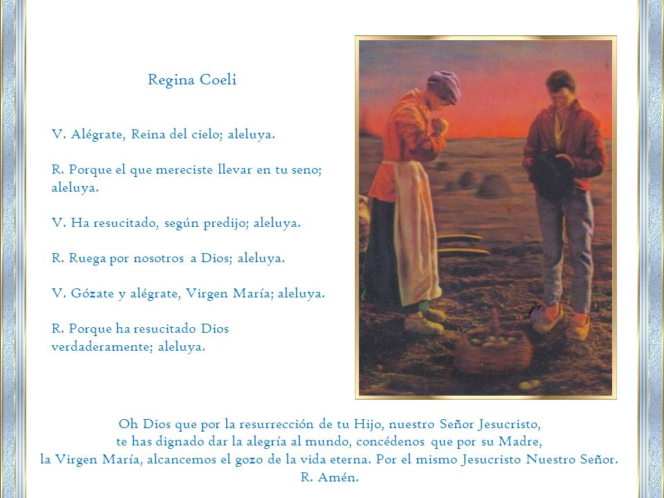 Regina Coeli V.Alégrate, Reina del cielo; aleluya.