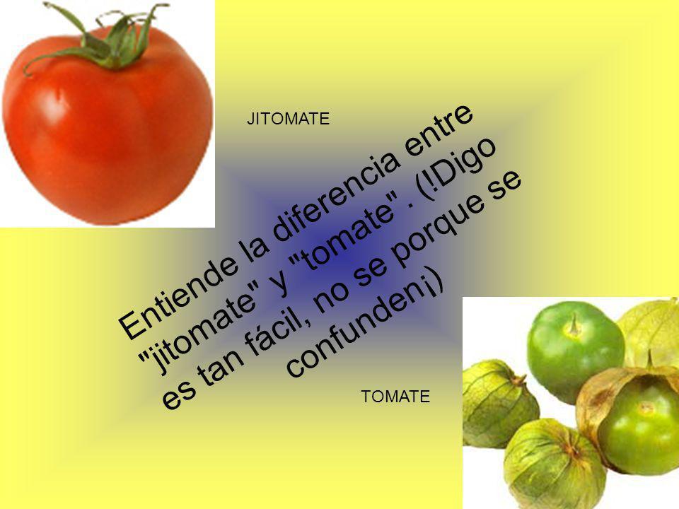 JITOMATE TOMATE Entiende la diferencia entre