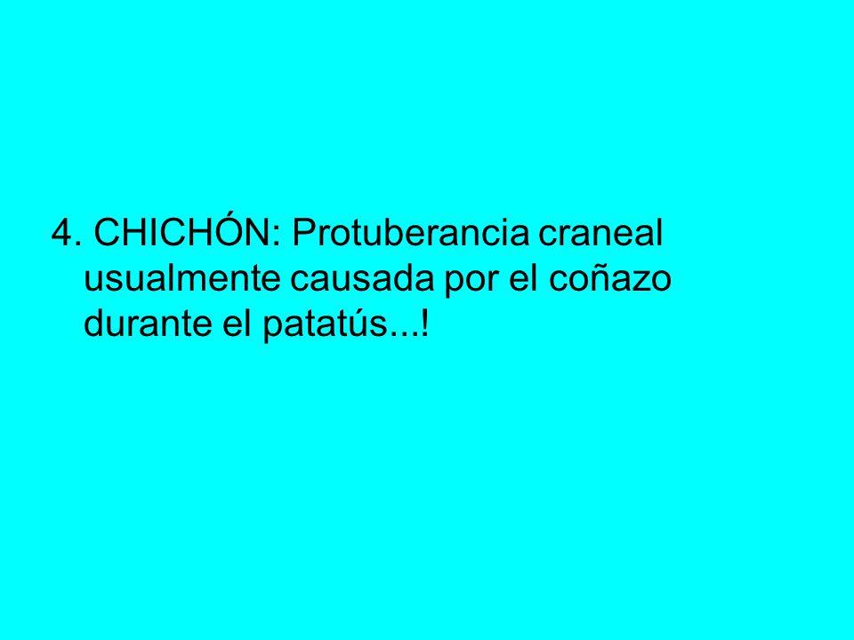 4. CHICHÓN: Protuberancia craneal usualmente causada por el coñazo durante el patatús...!