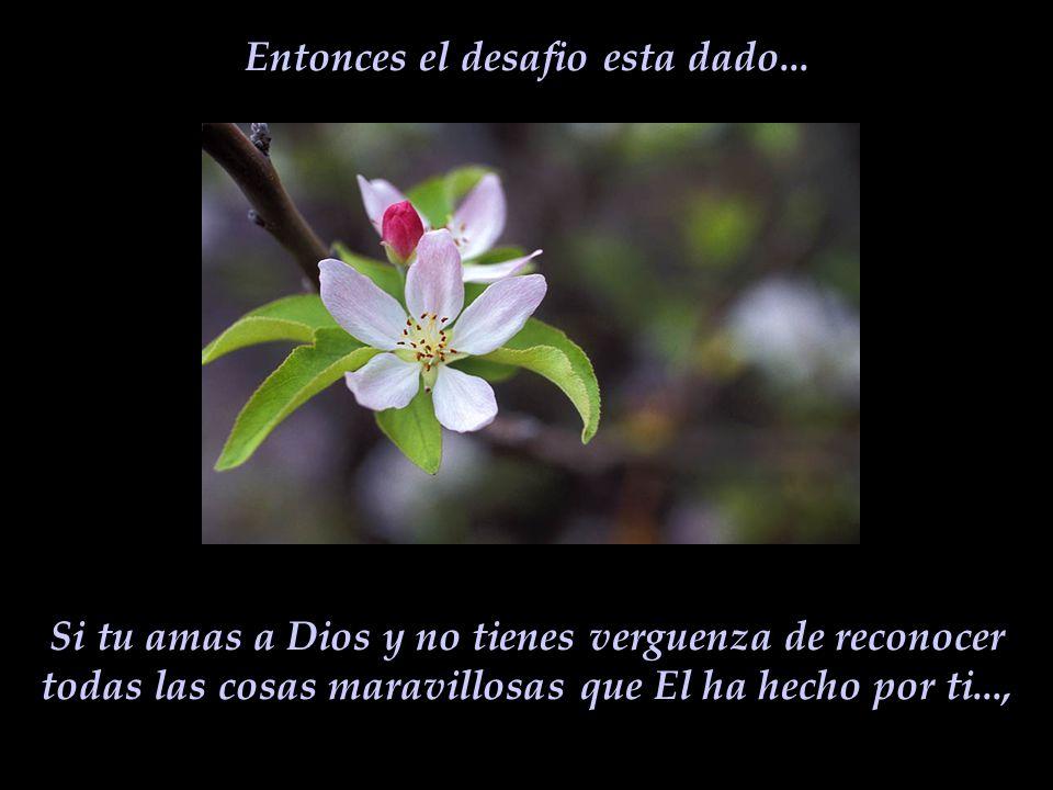 El es la fuente de mi existencia, es mi Salvador. El me sostiene cada dia. Sin El no soy nada, pero con El yo consigo todo...en la abundancia o en la