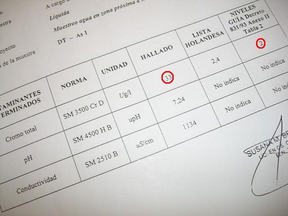 Análisis científicos realizados en el lugar por la Fundación Pro Tigre y Cuenca del Plata, en Julio de 2010, determinaron entre otras cuestiones, que los parámetros de Cromo totales disueltos en agua, estaban totalmente excedidos.