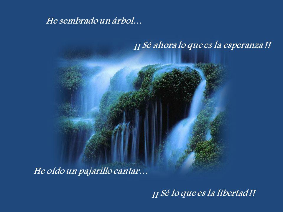 He sembrado un árbol… ¡¡ Sé ahora lo que es la esperanza !! He oído un pajarillo cantar… ¡¡ Sé lo que es la libertad !!