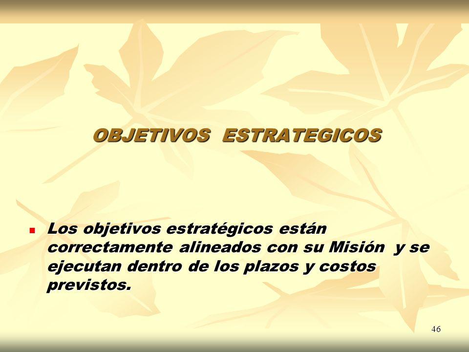46 OBJETIVOS ESTRATEGICOS Los objetivos estratégicos están correctamente alineados con su Misión y se ejecutan dentro de los plazos y costos previstos