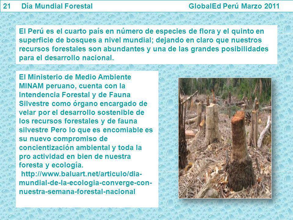 21 Día Mundial Forestal GlobalEd Perú Marzo 2011 El Perú es el cuarto país en número de especies de flora y el quinto en superficie de bosques a nivel