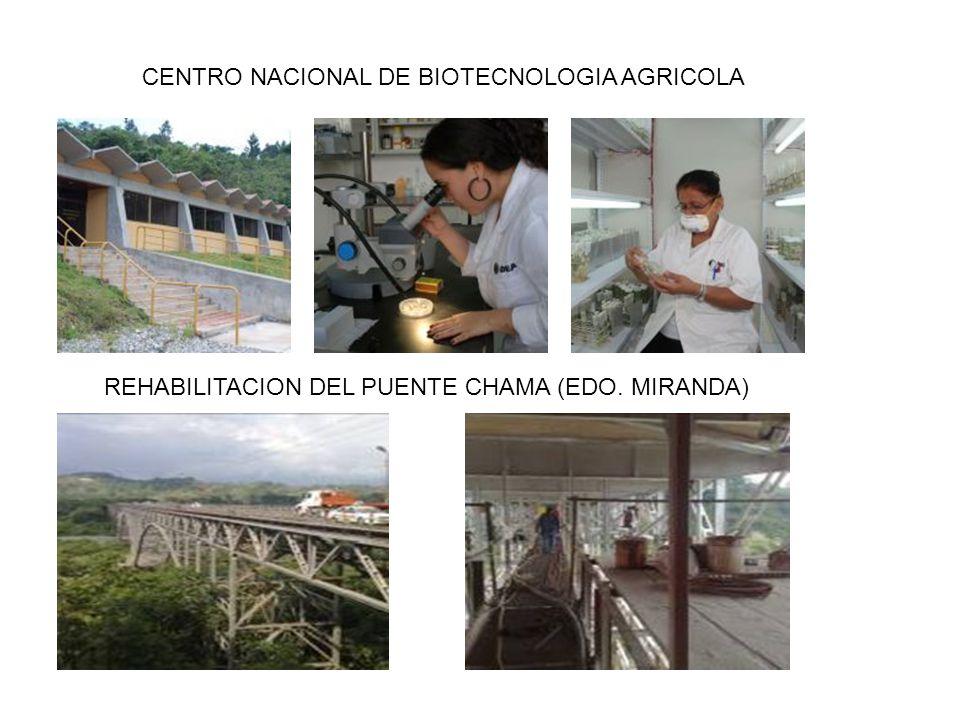 CENTRO NACIONAL DE BIOTECNOLOGIA AGRICOLA REHABILITACION DEL PUENTE CHAMA (EDO. MIRANDA)