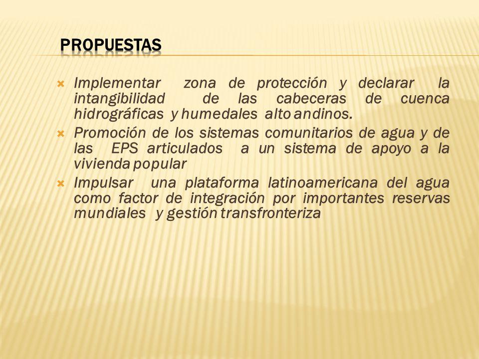 Implementar zona de protección y declarar la intangibilidad de las cabeceras de cuenca hidrográficas y humedales alto andinos. Promoción de los sistem