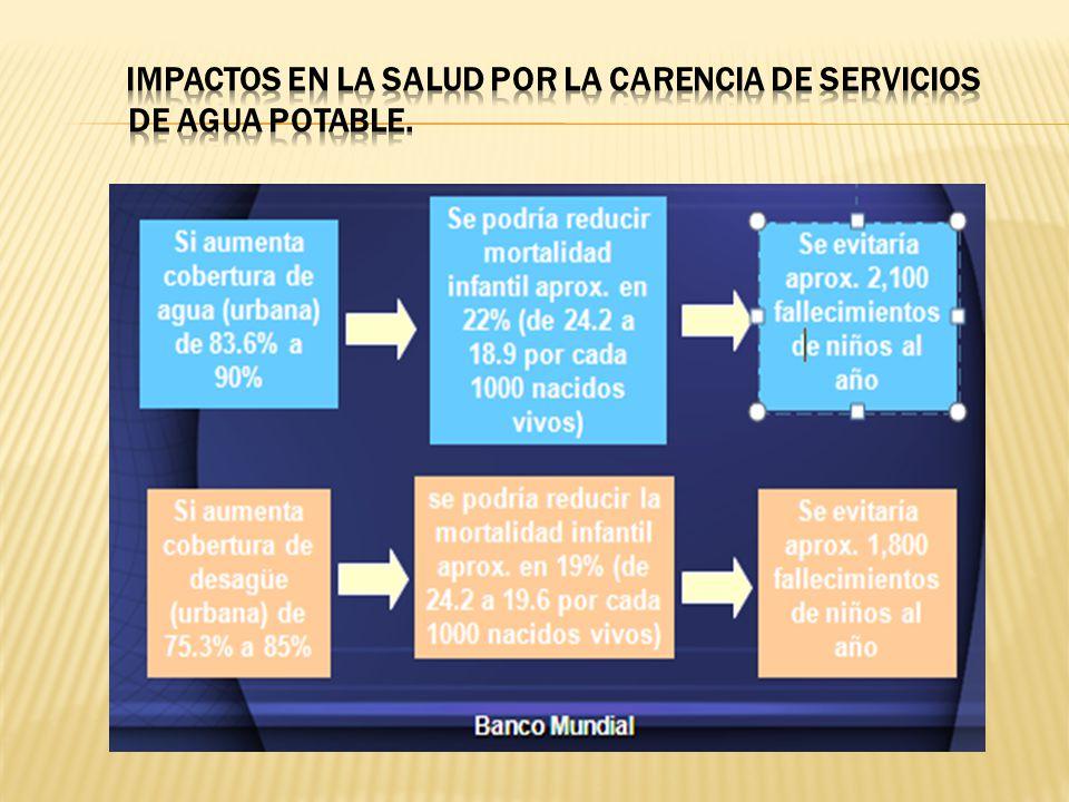 Privatización del agua es inconstitucional, antisocial y antiambiental.