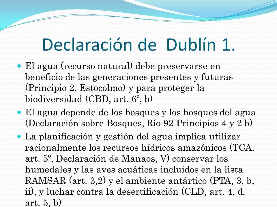 Declaración de Dublín 2.