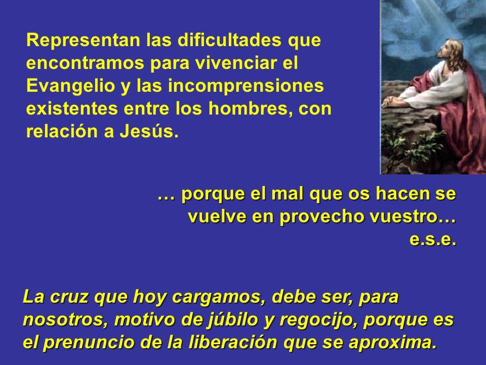 Representan las dificultades que encontramos para vivenciar el Evangelio y las incomprensiones existentes entre los hombres, con relación a Jesús.