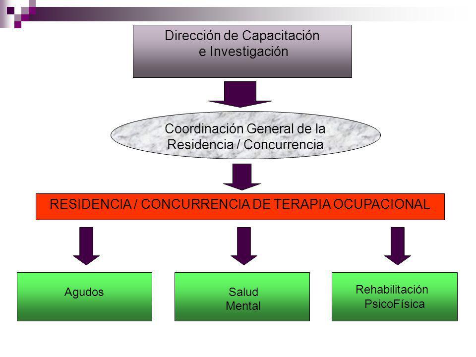 Agudos Salud Mental RESIDENCIA / CONCURRENCIA DE TERAPIA OCUPACIONAL Coordinación General de la Residencia / Concurrencia Dirección de Capacitación e Investigación Rehabilitación PsicoFísica