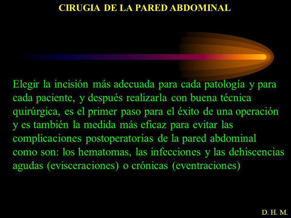 CIRUGIA DE LA PARED ABDOMINAL D. H. M. Elegir la incisión más adecuada para cada patología y para cada paciente, y después realizarla con buena técnic