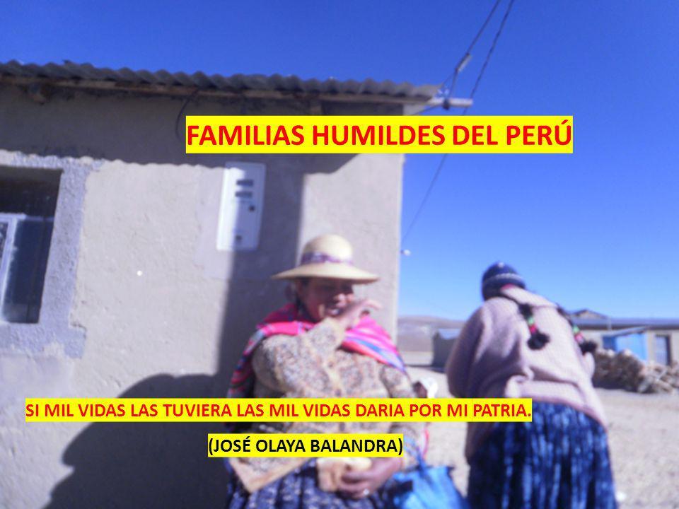 FAMILIAS HUMILDES DEL PERÚ SI MIL VIDAS LAS TUVIERA LAS MIL VIDAS DARIA POR MI PATRIA.