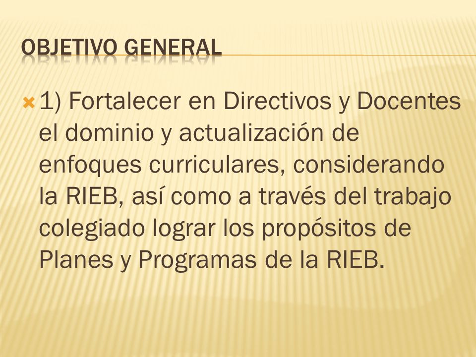 1) Fortalecer en Directivos y Docentes el dominio y actualización de enfoques curriculares, considerando la RIEB, así como a través del trabajo colegiado lograr los propósitos de Planes y Programas de la RIEB.