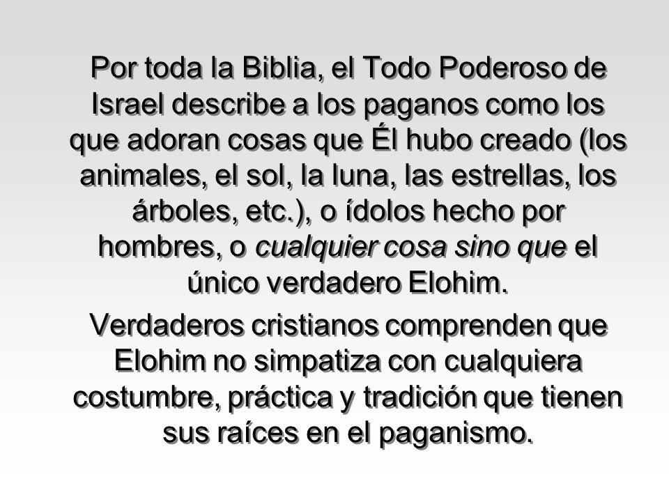 Por toda la Biblia, el Todo Poderoso de Israel describe a los paganos como los que adoran cosas que Él hubo creado (los animales, el sol, la luna, las