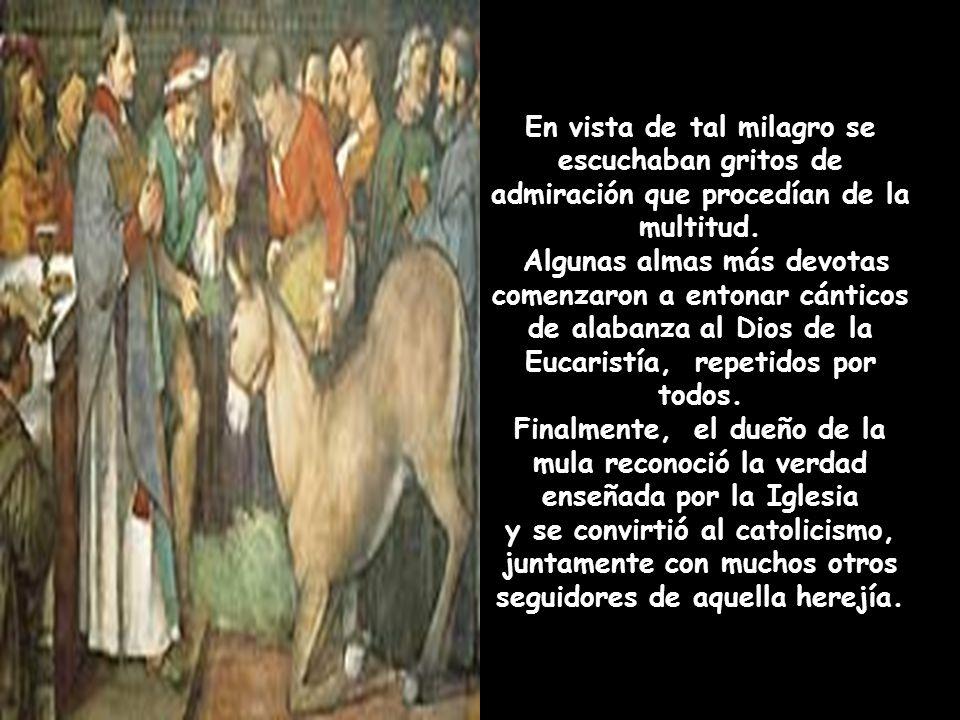 Efectivamente, la mula salió corriendo cuando se dio cuenta de la existencia del alimento, pero bruscamente, se volvió en dirección al Santo y dobló l
