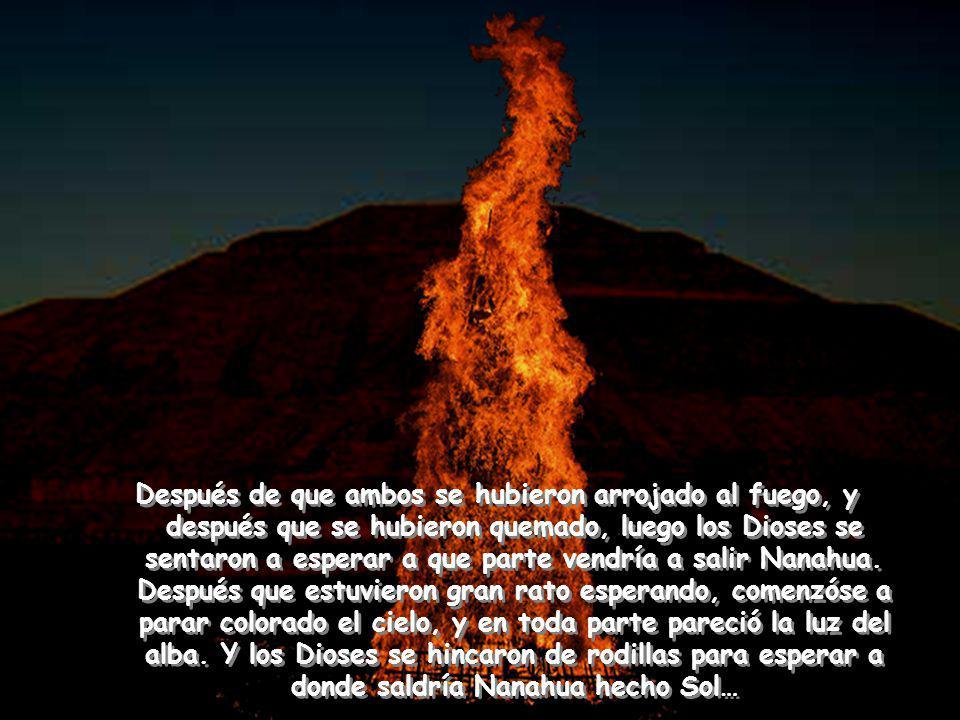 Y como vio Tecuciztécatl que se había echado en el fuego y ardía, arremetió y echóse en el fuego también.