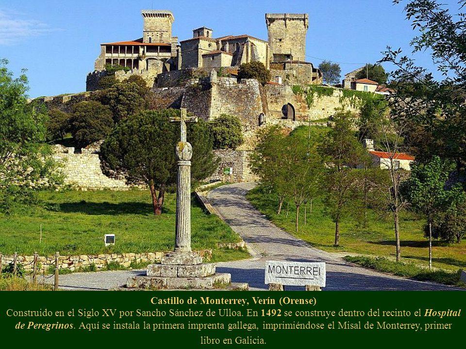 Las Islas Cíes, Vigo (Pontevedra) Su particular fauna, su flora y sus impresionantes paisajes hacen de ella auténtico objeto de deseo de los gallegos