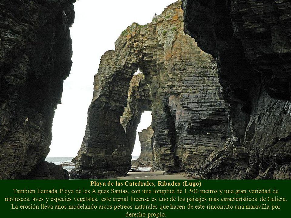 Puente del Milenio, Orense Destaca por su vanguardismo y la osadía de sus formas. El puente del Milenio es una obra del arquitecto Álvaro Varela de Ug