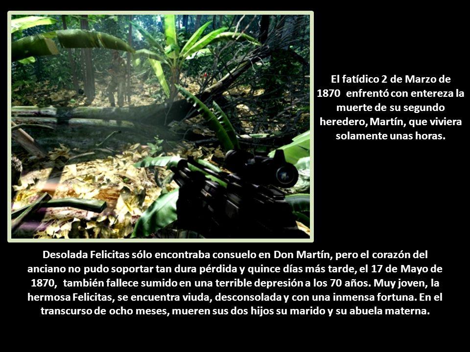Desolada Felicitas sólo encontraba consuelo en Don Martín, pero el corazón del anciano no pudo soportar tan dura pérdida y quince días más tarde, el 17 de Mayo de 1870, también fallece sumido en una terrible depresión a los 70 años.