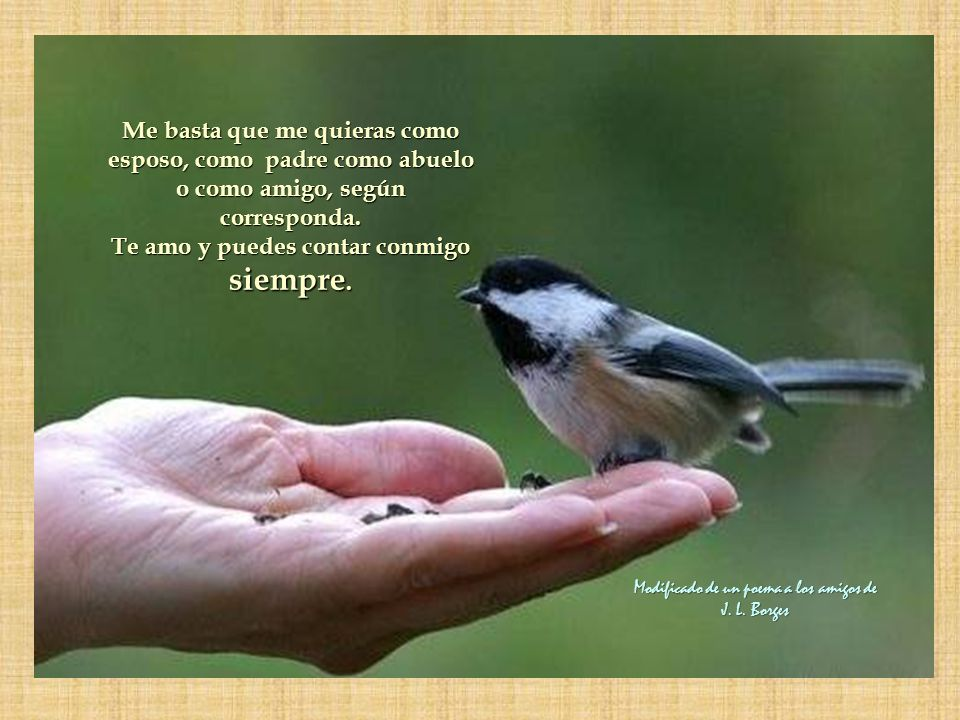 Compartamos en familia, amemonos como somos y apoyémonos entre todos. Compartamos nuestras vidas con amor respeto mutuo sin egoísmos ni envidias solo
