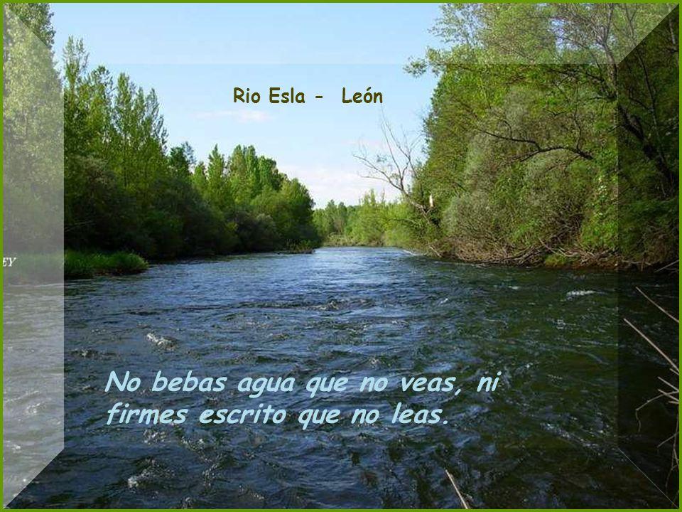 Picos de Europa - León Si las orejas sacude la burra, agua segura.