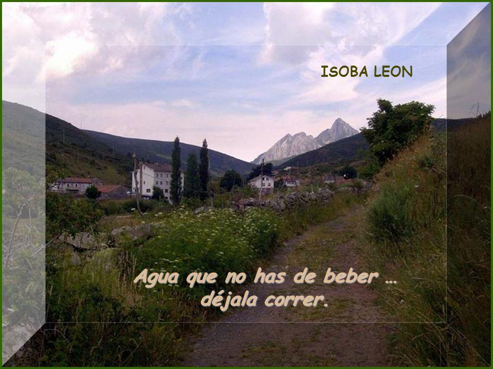 Rio Esla - León No bebas agua que no veas, ni firmes escrito que no leas.