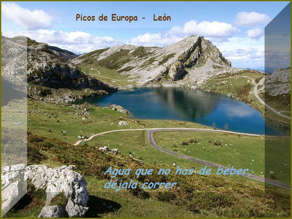 Rio Duratón - Segovia Agua, barro y basura, crian buena verdura.