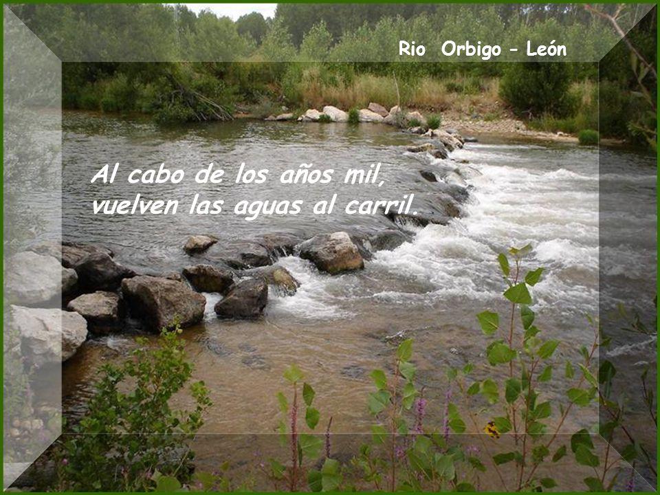 Rio Omaña - León El que con agua se desayuna, es que con vino cenó.
