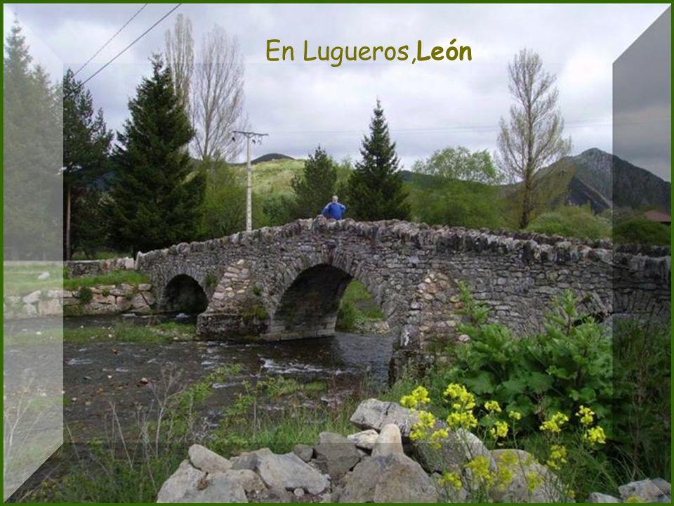 Rio Orbigo - León Al cabo de los años mil, vuelven las aguas al carril.