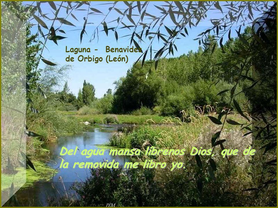 Pantano Del Porma - León Cielo a corderos, agua a calderos.