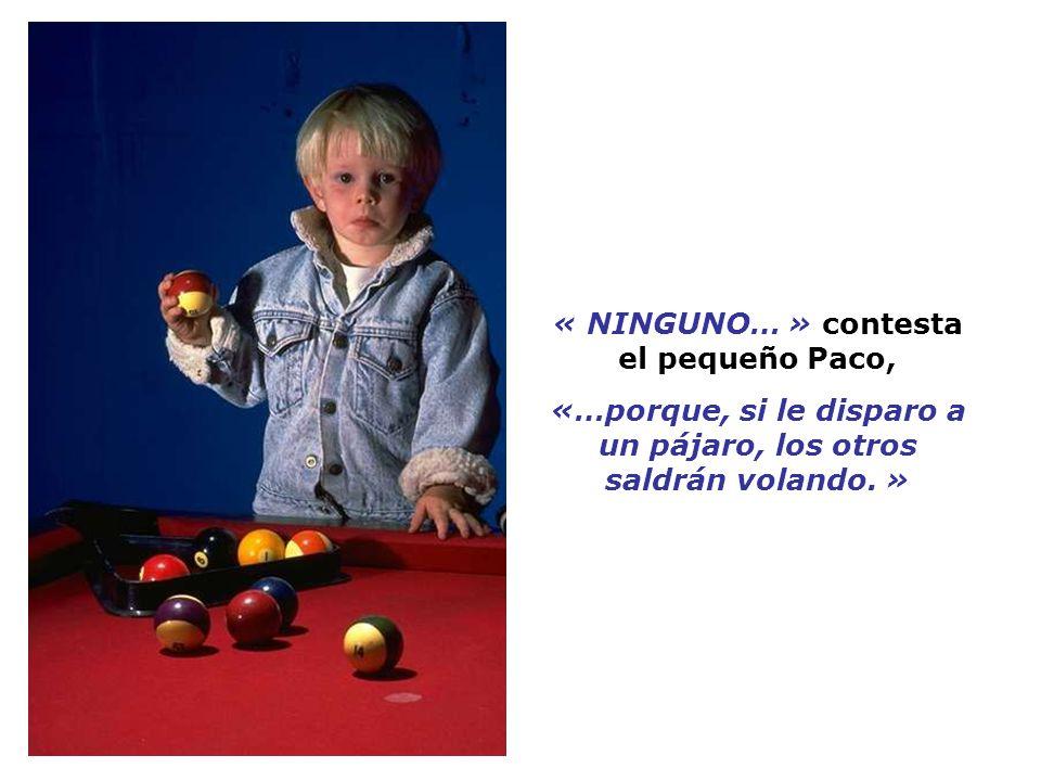 « NINGUNO… » contesta el pequeño Paco, «…porque, si le disparo a un pájaro, los otros saldrán volando.