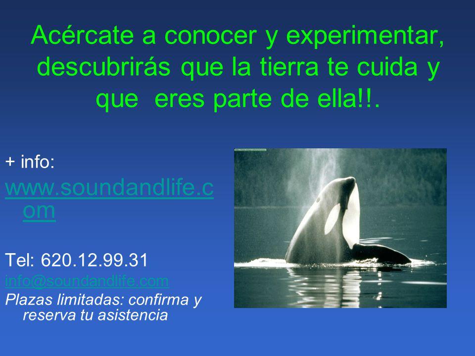 Imparte: Eva Julián Adán Músico, compositor, etnomusicólogo, terapeuta sonoro y sonidista especializado en Bioacústica y en la valoración del estado de los ecosistemas a través del análisis del paisaje sonoro.