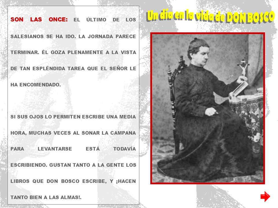 …/// ESTA NOCHE QUIERE HABLAR DE LO QUE TODO VIERON HOY EN EL PASEO: