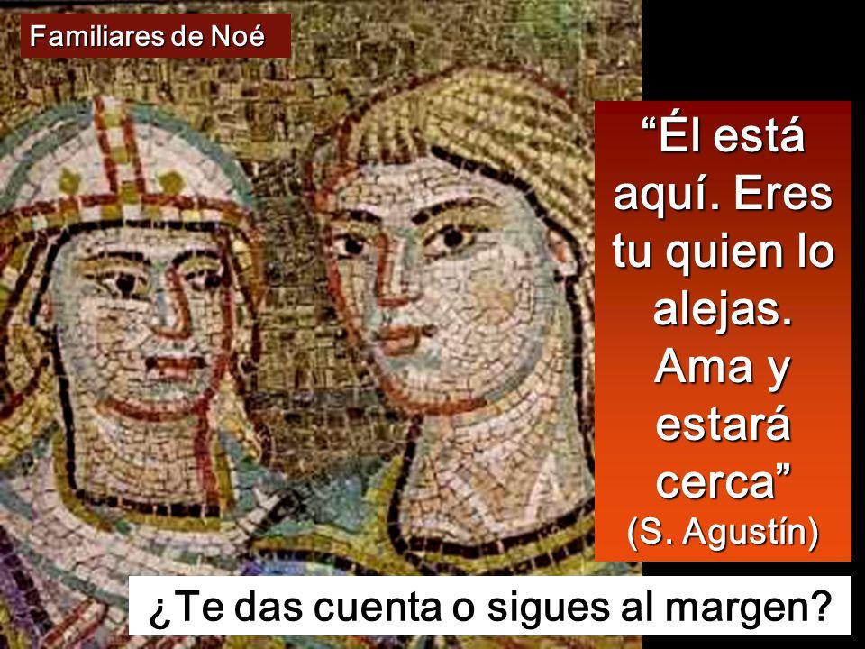 Mt 24,37-44 En aquel tiempo dijo Jesús a sus discípulos: Cuando venga el Hijo del hombre, pasará como en tiempo de Noé.