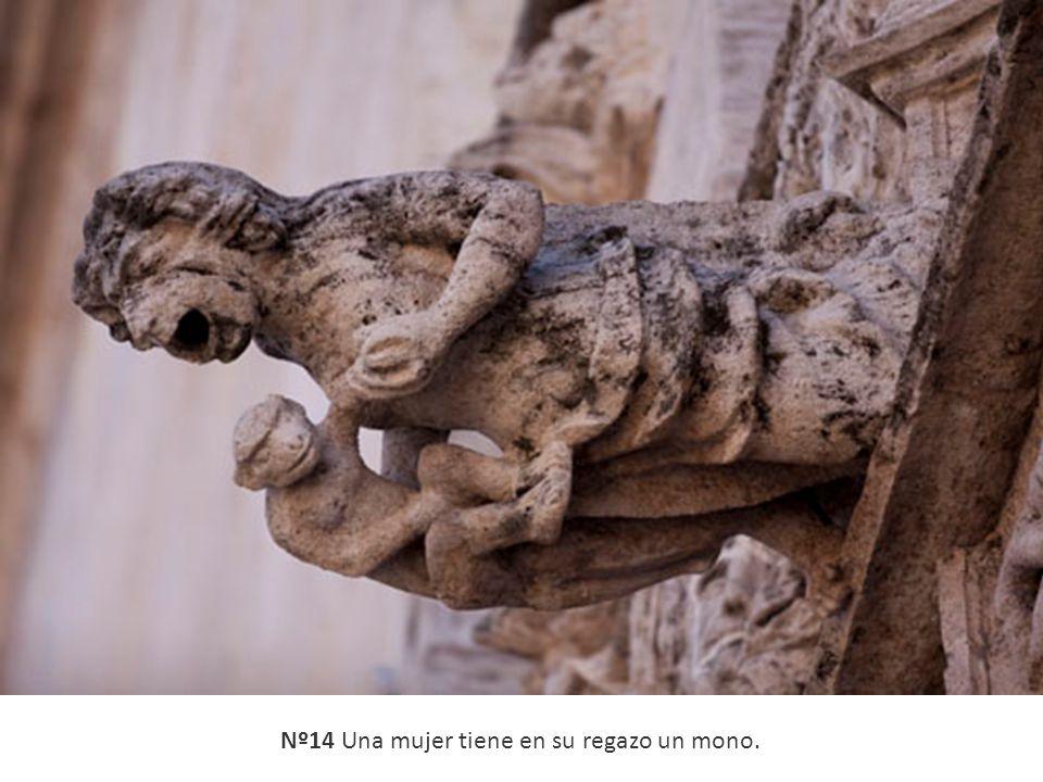 Nº14 Una mujer tiene en su regazo un mono.
