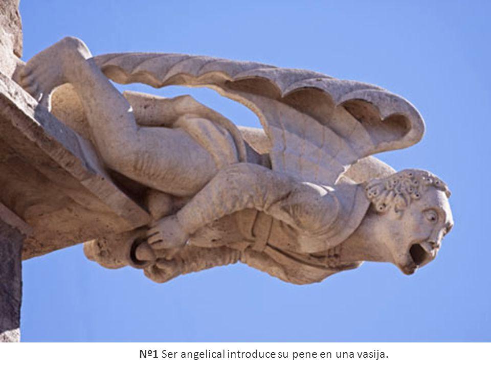 Nº1 Ser angelical introduce su pene en una vasija.