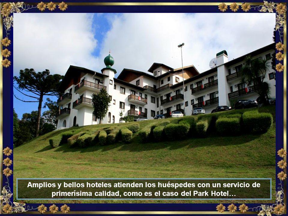 El turismo es cada vez mayor en Treze Tílias y en ciudades vecinas que componen la Ruta de la Amistad, como Piratuba, Fraiburgo y otras…