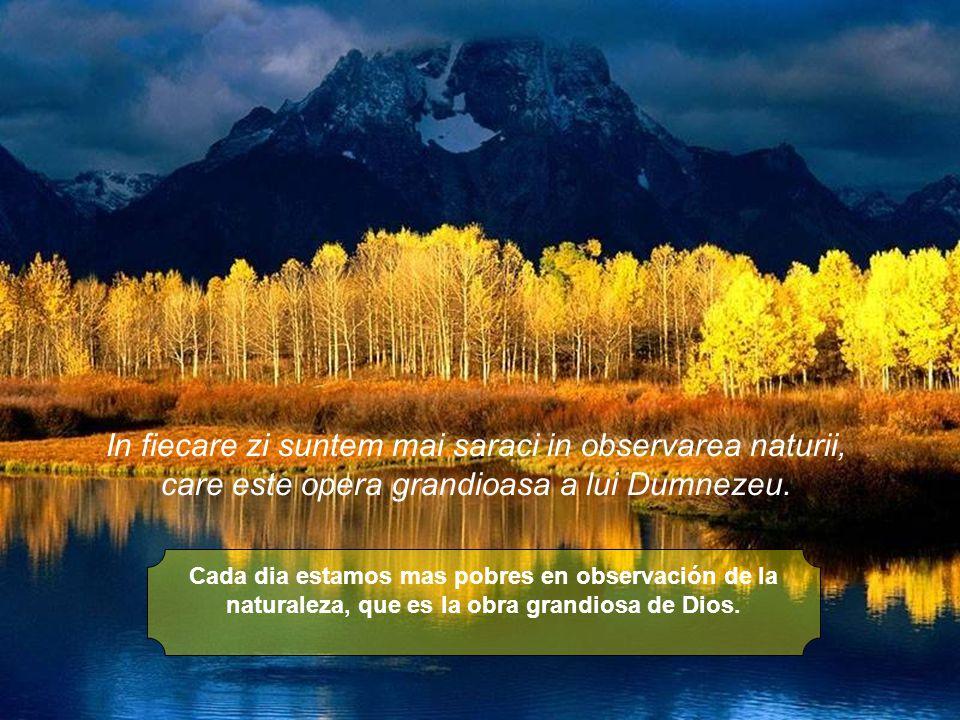 Cada dia estamos mas pobres en observación de la naturaleza, que es la obra grandiosa de Dios.