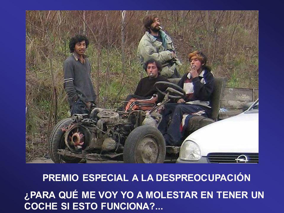 PREMIO ESPECIAL AL MEJOR TECHO…¡¡LUNAR!!…SÍ, SÍ.