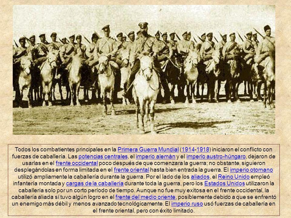El empleo de caballos en la primera guerra mundial marcó un período de transición en la evolución de los conflictos armados. Las unidades de caballerí