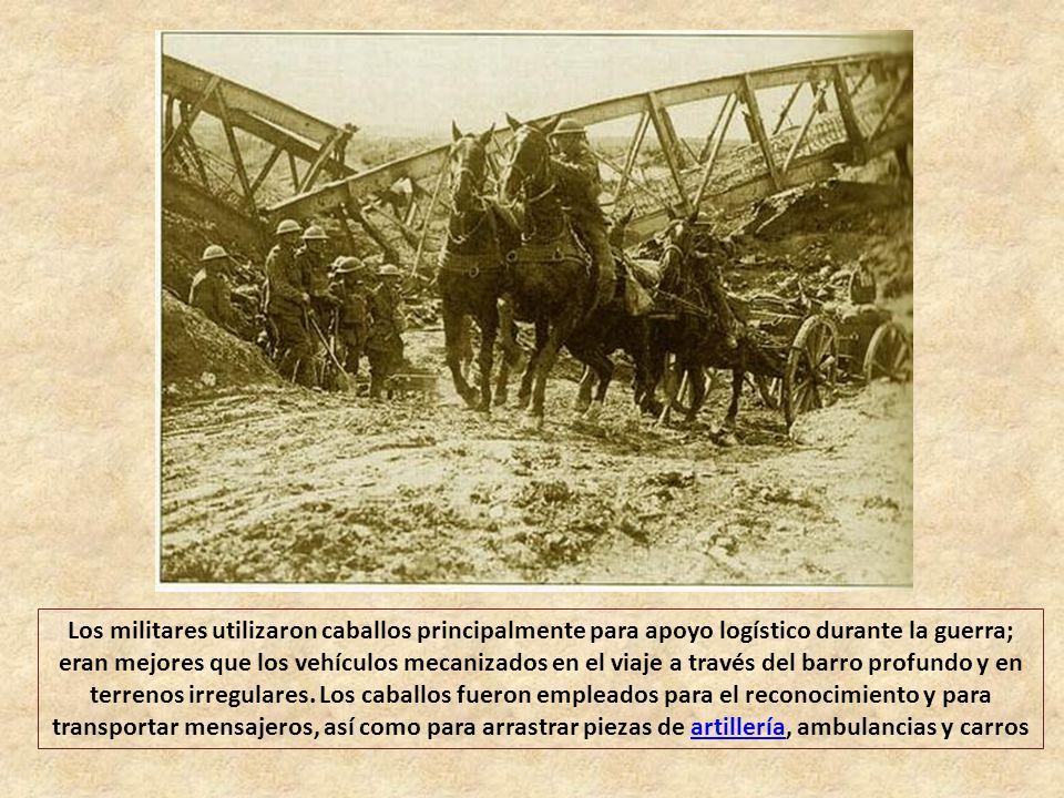 Todos los combatientes principales en la Primera Guerra Mundial (1914-1918) iniciaron el conflicto con fuerzas de caballería. Las potencias centrales,